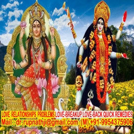 vedic astrologer solutions