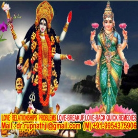vedic astrologer tantric remedies